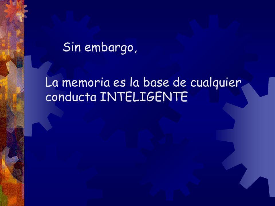 Sin memoria nuestra vida perdería sentido La memoria es la base para adquirir y asimilar conocimientos y experiencias nuevas