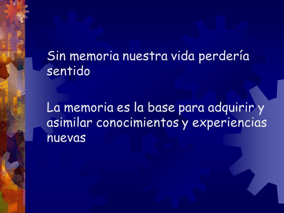 MEMORIA SENSORIAL, MS Conjunto de almacenes de información provenientes de los distintos sentidos que prolongan la duración de la estimulación Almacén icónico: se encarga de recibir la percepción visual.