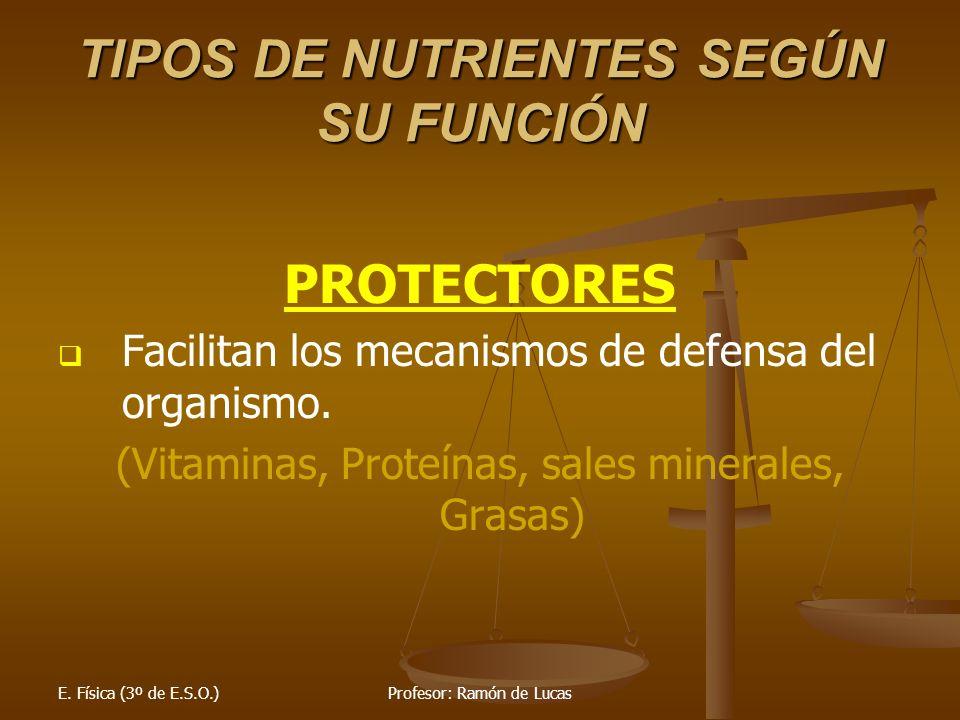 E. Física (3º de E.S.O.)Profesor: Ramón de Lucas TIPOS DE NUTRIENTES SEGÚN SU FUNCIÓN PROTECTORES Facilitan los mecanismos de defensa del organismo. (