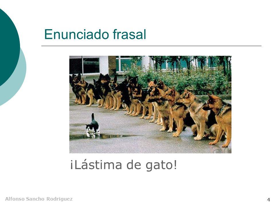Alfonso Sancho Rodríguez 4 Enunciado frasal ¡Lástima de gato!