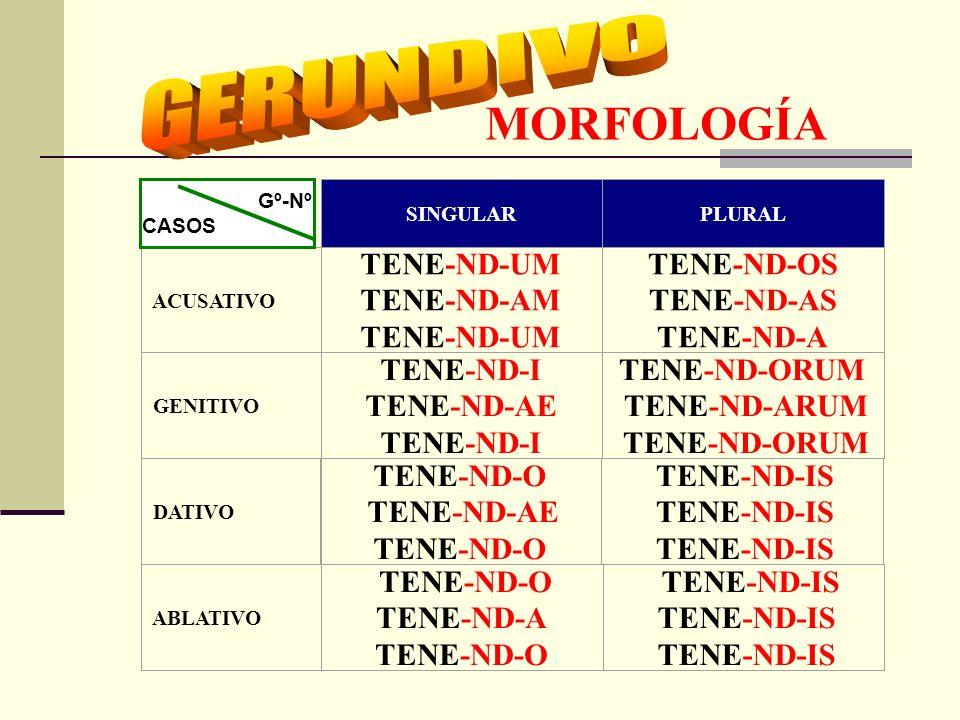 MORFOLOGÍA Forma nominal del verbo. verbo Dualidad adjetivo TIEMPO: FUTURO.