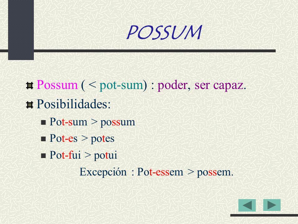 POSSUM Possum ( < pot-sum) : poder, ser capaz. Posibilidades: Pot-sum > possum Pot-es > potes Pot-fui > potui Excepción : Pot-essem > possem.
