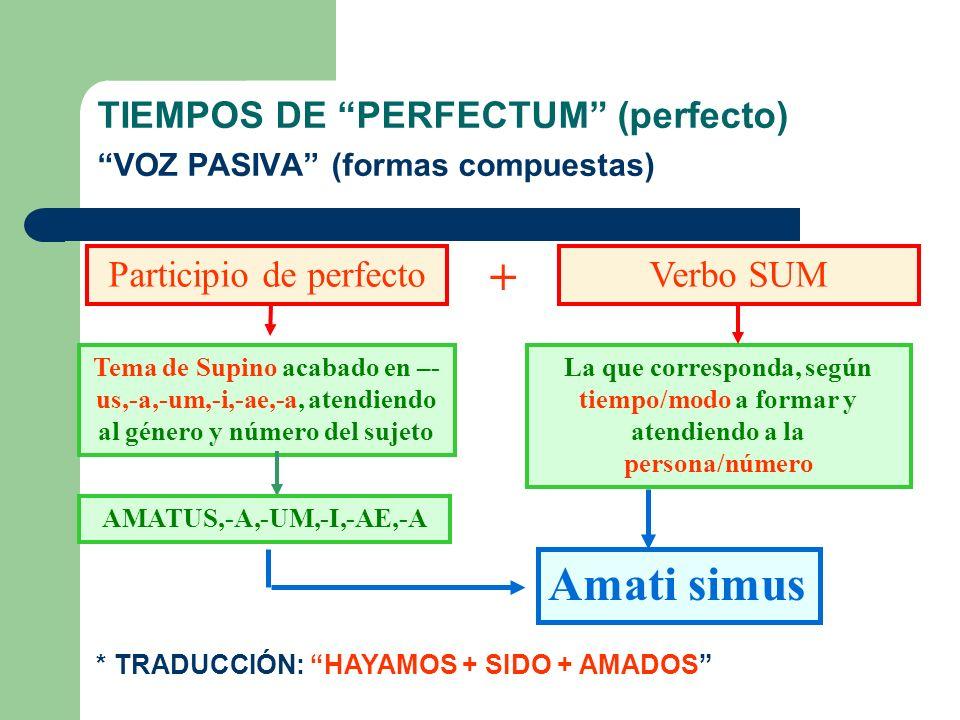TIEMPOS DE PERFECTUM (perfecto) VOZ PASIVA (formas compuestas) * ESTRUCTURA EN CAST.: HABER + SIDO + PARTICIPIO (var.) PARTICIPIO DE PERFECTO SUM TEMA