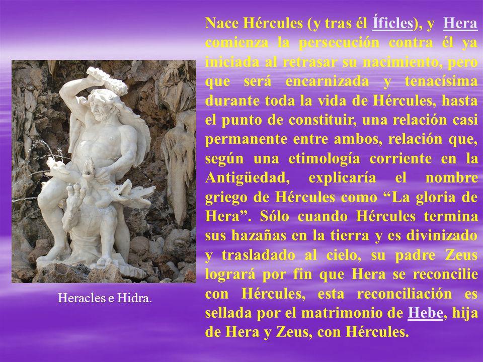 Nace Hércules (y tras él Íficles), y Hera comienza la persecución contra él ya iniciada al retrasar su nacimiento, pero que será encarnizada y tenacís
