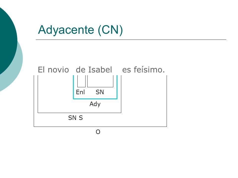 Funciones del SN Sin preposición sujeto (S) complemento directo (CD) atributo (Atr) adyacente (Ady) vocativo (Voc) complemento circunstancial (CC) Con preposición adyacente (Ady) complemento del adjetivo (CAdj) complemento del adverbio (CAdv) complemento directo (CD) complemento indirecto (CI) complemento circunstancial (CC) suplemento (Supl) suplemento indirecto (Supl Ind) complemento agente (CAg)
