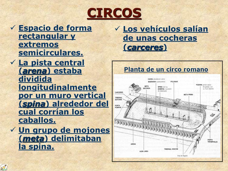 CIRCOS Espacio de forma rectangular y extremos semicirculares. arena spina La pista central (arena) estaba dividida longitudinalmente por un muro vert