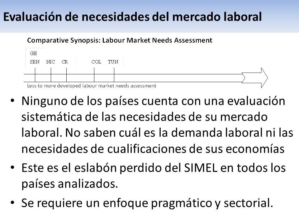 Evaluación de necesidades del mercado laboral Ninguno de los países cuenta con una evaluación sistemática de las necesidades de su mercado laboral. No