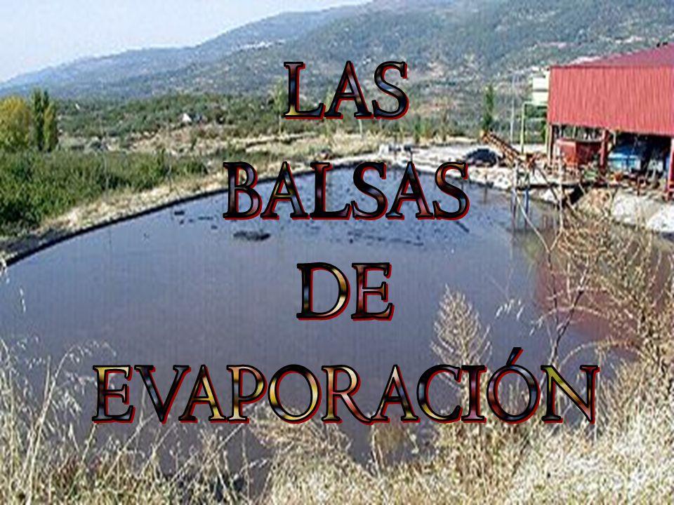 Las balsas de evaporación son estanques de gran superficie en los cuales contienen vertidos provenientes de los procesos de preparación de la aceituna con el fin de que estos residuos contaminantes se evaporen y no sean tan perjudiciales para el medio ambiente.
