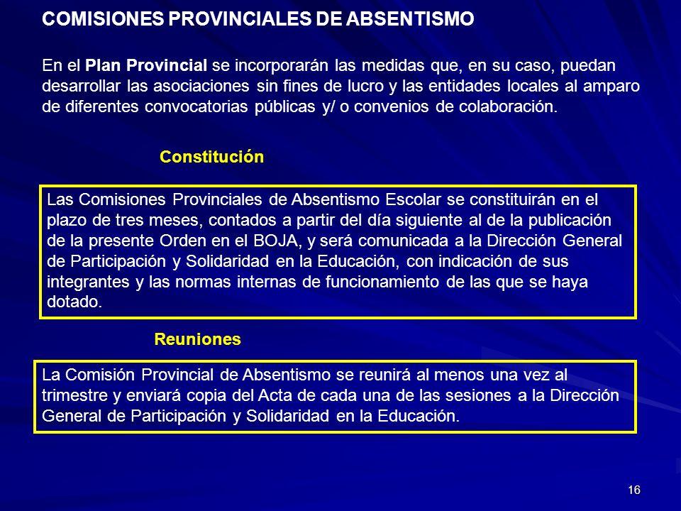 16 En el Plan Provincial se incorporarán las medidas que, en su caso, puedan desarrollar las asociaciones sin fines de lucro y las entidades locales a