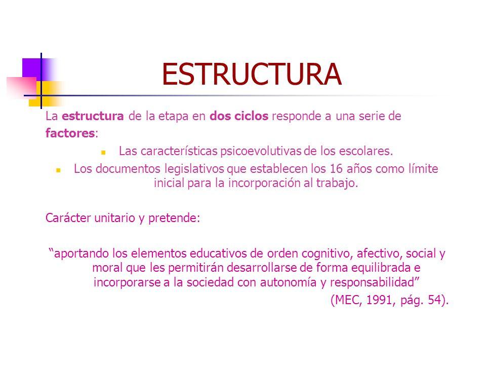 Alumnas: Marta Atrio, Gema Extremo, Almudena Fernández, Mª Paz Fernández6 ESTRUCTURA