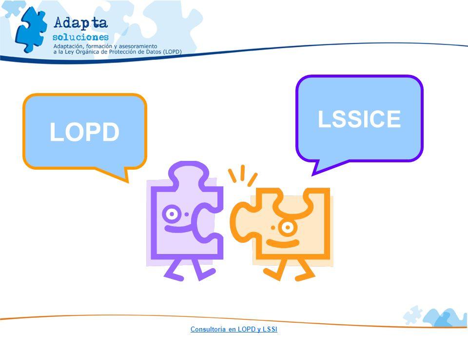 Consultoría en LOPD y LSSI LSSICE LOPD