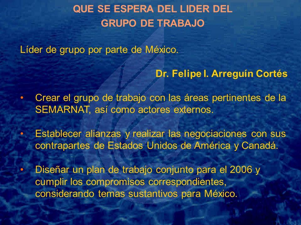 QUE SE ESPERA DEL LIDER DEL GRUPO DE TRABAJO Líder de grupo por parte de México.