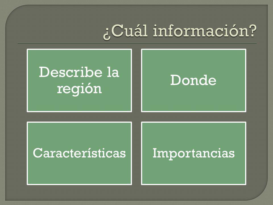 Describe la región Donde CaracterísticasImportancias