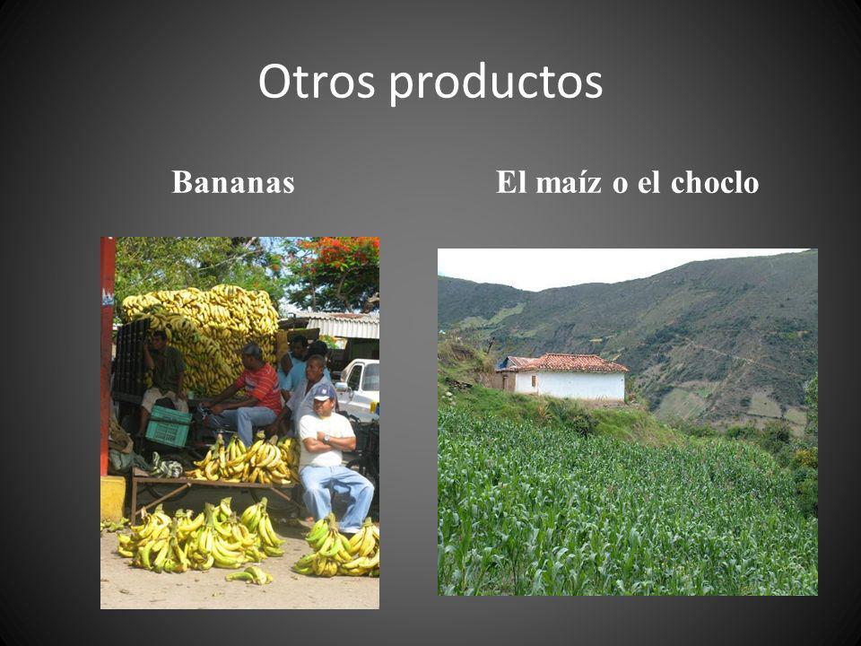 Otros productos BananasEl maíz o el choclo