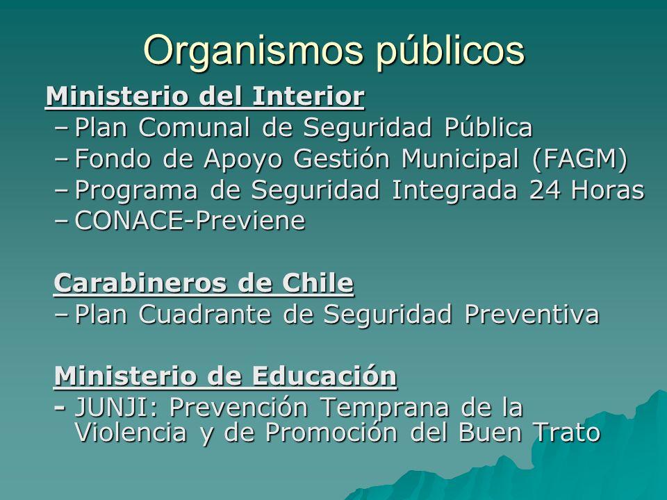 Organismos públicos Ministerio del Interior –Plan Comunal de Seguridad Pública –Fondo de Apoyo Gestión Municipal (FAGM) –Programa de Seguridad Integra