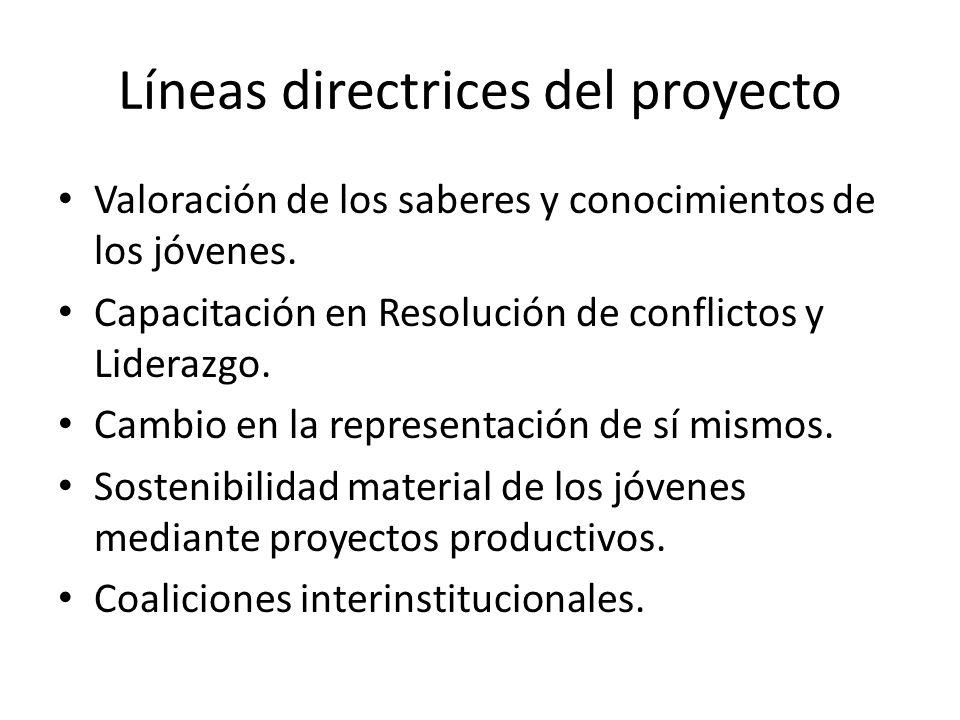 Líneas directrices del proyecto Valoración de los saberes y conocimientos de los jóvenes. Capacitación en Resolución de conflictos y Liderazgo. Cambio