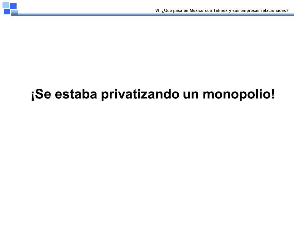 ¡Se estaba privatizando un monopolio. VI.