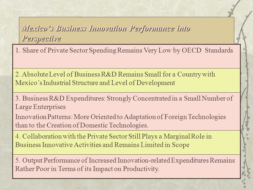 R&D by Performing Sector, 1993-2005 (% of Total R&D) Increased Business Investment in Innovative Activities Source: Conacyt 36.8 53.7 46.9 42.7 30.7 34.0 30.3 29.8 25.5 28.2 19.7 22.4 20.8 25.2 10.4 25.9 28.4 25.0 39.1 41.7 45.0 38.7 36.4 33.0 35.5 27.7 23.2 28.7 30.3 39.7 27.2 28.3 31.6 39.9 37.9 45.8 46.7 26.3 0.0 10.0 20.0 30.0 40.0 50.0 60.0 1993199419951996199719981999200020012002200320042005 IndustryGovernmentHigher Education