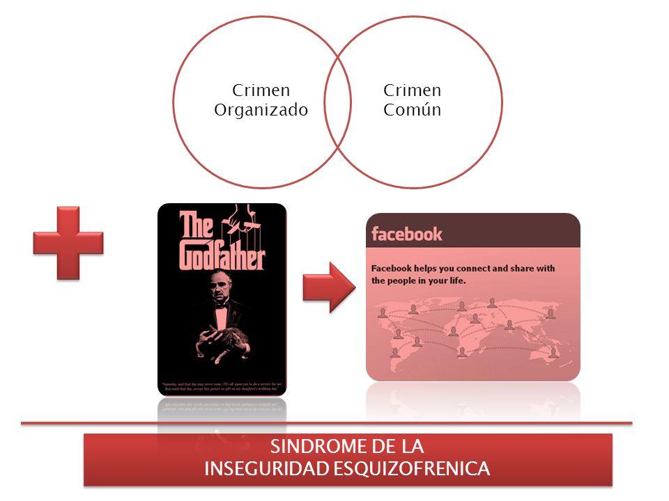 Crimen Común Crimen Organizado SINDROME DE LA INSEGURIDAD ESQUIZOFRENICA SINDROME DE LA INSEGURIDAD ESQUIZOFRENICA