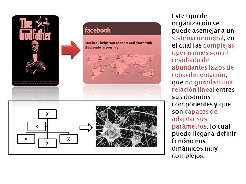 Este tipo de organización se puede asemejar a un sistema neuronal, en el cual las complejas operaciones son el resultado de abundantes lazos de retroa