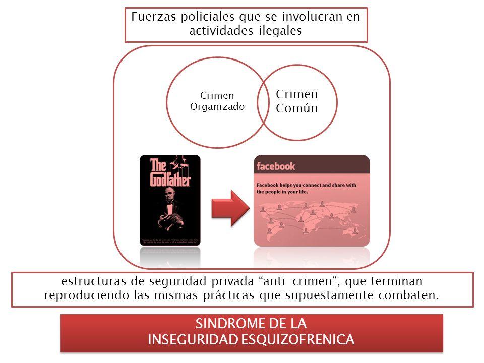 Crimen Común Crimen Organizado SINDROME DE LA INSEGURIDAD ESQUIZOFRENICA SINDROME DE LA INSEGURIDAD ESQUIZOFRENICA Fuerzas policiales que se involucra