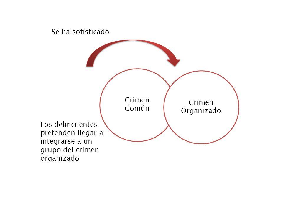 Crimen Común Crimen Organizado Se ha sofisticado Los delincuentes pretenden llegar a integrarse a un grupo del crimen organizado