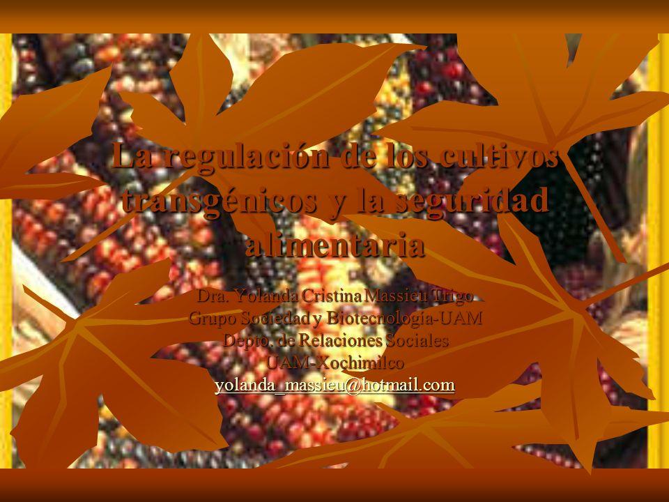 La regulación de los cultivos transgénicos y la seguridad alimentaria Dra. Yolanda Cristina Massieu Trigo Grupo Sociedad y Biotecnología-UAM Depto. de