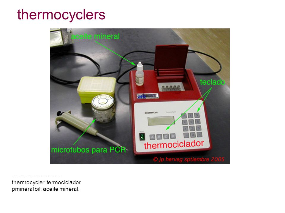 thermocyclers --------------------------- thermocycler: termociclador pmineral oil: aceite mineral.