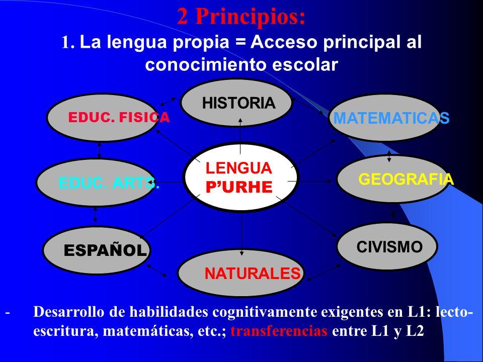 Principio 2: Aprendizaje integrado de contenidos y lenguas Desarrollo de las lenguas a través de las asignaturas L1 PURHE ASIGNATURAS L2 ESPAÑOL MACHGECN Refle- xión sobre la lengua gramá- tica, léxico Desarrollo de las competen- cias comunica- tivas Desarrollo de las Competen- cias comunica- tivas Refle- xión sobre la lengua, gramá- tica, léxico Transferencias de habilidades Reflexión contrastiva