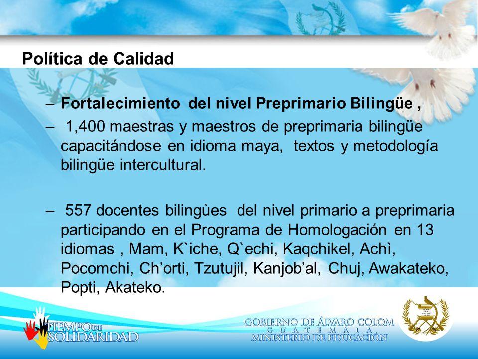 10,176 docentes bilingües del nivel primario capacitados, en 16 idiomas indígenas: Kiche, Mam, Kaqchikel, Qeqchi, Achi, Awakateko, Akateko, Chuj, Itza, Ixil, Popti, Poqomchi, Qanjobal, Sakapulteko, Tzutujil, Uspanteko sobre Lineamientos EBI, Uso de textos e indicadores de calidad de la EBI.