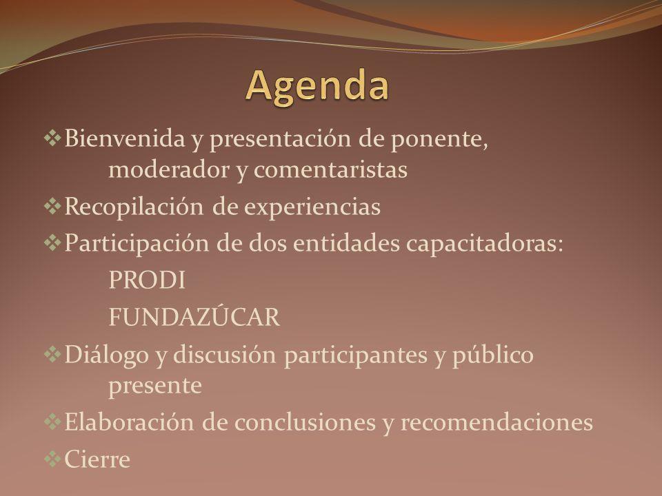 Bienvenida y presentación de ponente, moderador y comentaristas Recopilación de experiencias Participación de dos entidades capacitadoras: PRODI FUNDAZÚCAR Diálogo y discusión participantes y público presente Elaboración de conclusiones y recomendaciones Cierre