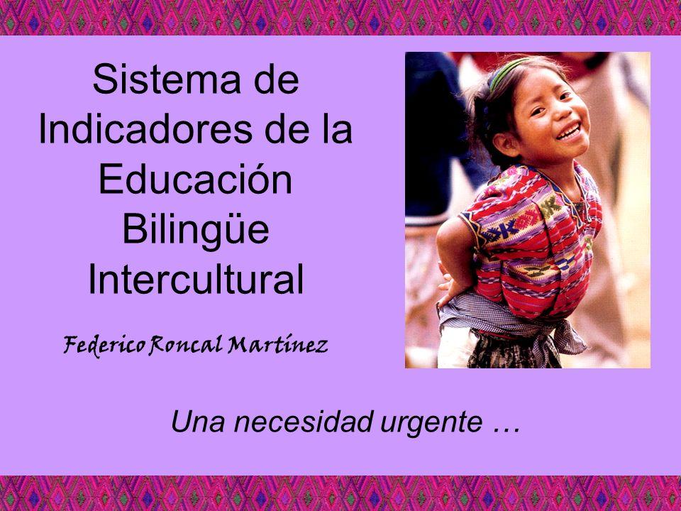 Sistema de Indicadores de la Educación Bilingüe Intercultural Una necesidad urgente … Federico Roncal Martínez