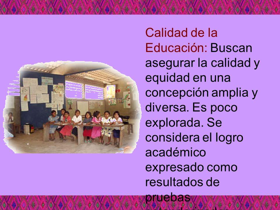 Calidad de la Educación: Buscan asegurar la calidad y equidad en una concepción amplia y diversa. Es poco explorada. Se considera el logro académico e