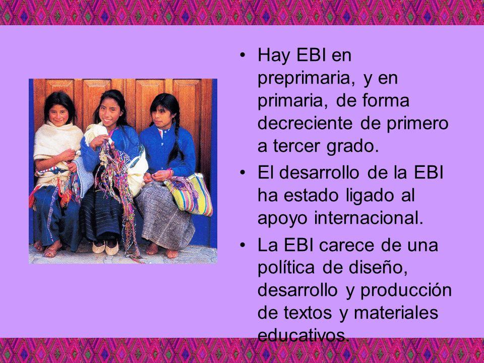 Hay EBI en preprimaria, y en primaria, de forma decreciente de primero a tercer grado. El desarrollo de la EBI ha estado ligado al apoyo internacional