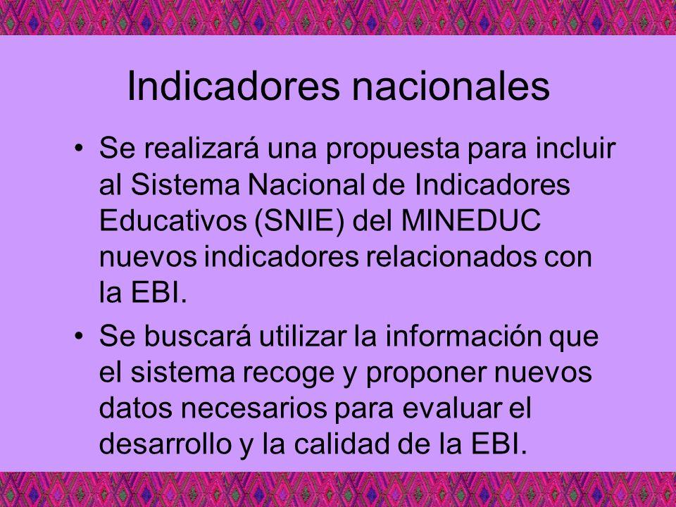Indicadores nacionales Se realizará una propuesta para incluir al Sistema Nacional de Indicadores Educativos (SNIE) del MINEDUC nuevos indicadores rel