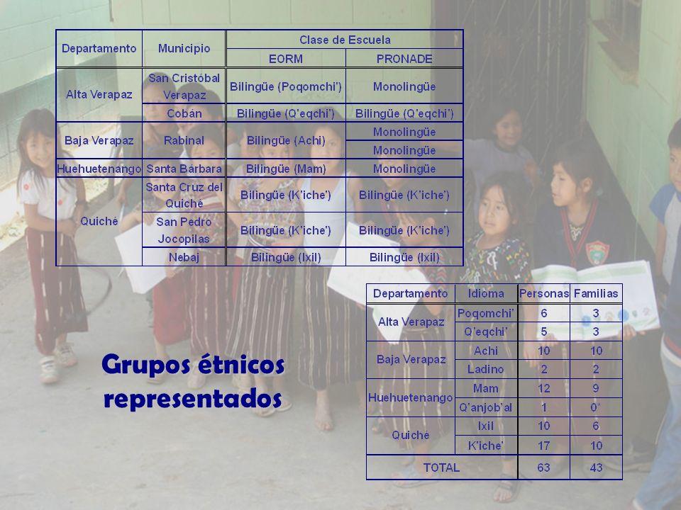 Grupos étnicos representados