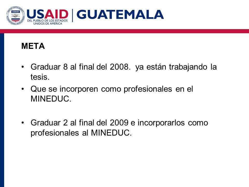 META Graduar 8 al final del 2008. ya están trabajando la tesis. Que se incorporen como profesionales en el MINEDUC. Graduar 2 al final del 2009 e inco