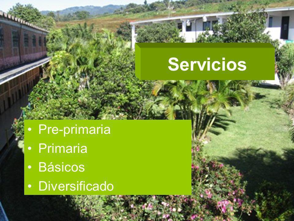 Servicios Pre-primaria Primaria Básicos Diversificado