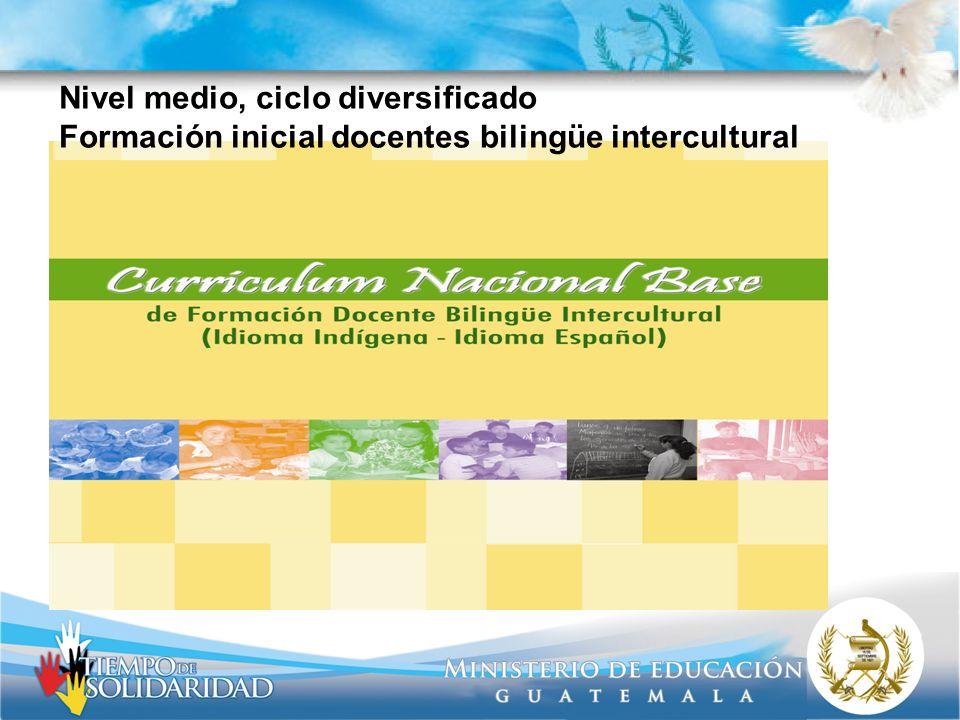 Nivel medio, ciclo diversificado Formación inicial docentes bilingüe intercultural