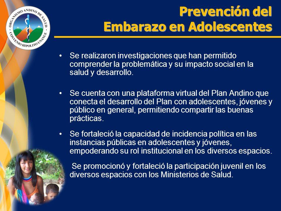 Se realizaron investigaciones que han permitido comprender la problemática y su impacto social en la salud y desarrollo.