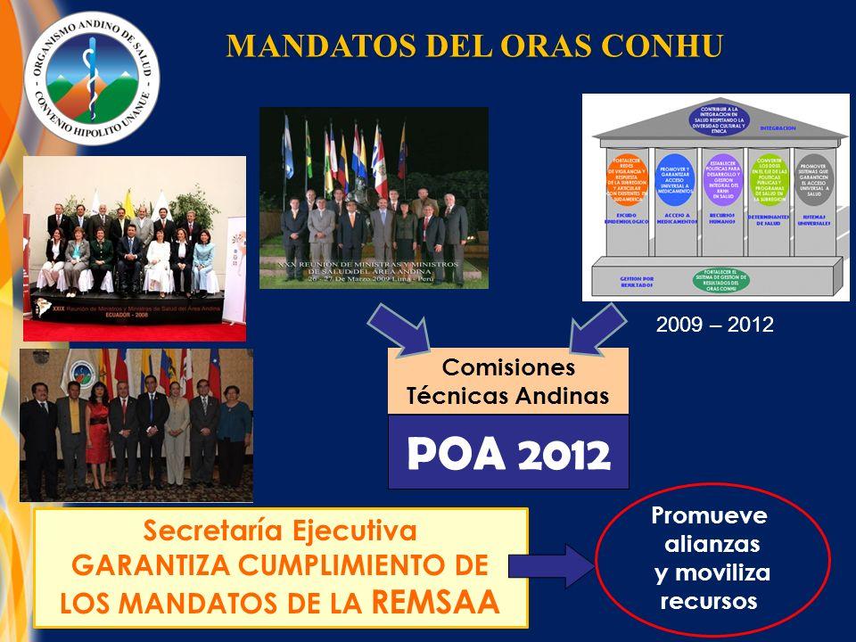 POA 2012 Secretaría Ejecutiva GARANTIZA CUMPLIMIENTO DE LOS MANDATOS DE LA REMSAA Promueve alianzas y moviliza recursos 2009 – 2012 Comisiones Técnicas Andinas MANDATOS DEL ORAS CONHU