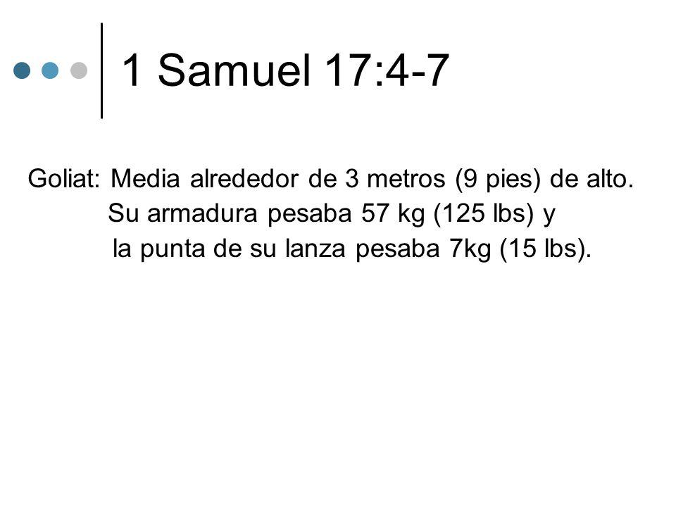 1 Samuel 17:4-7 Goliat: Media alrededor de 3 metros (9 pies) de alto. Su armadura pesaba 57 kg (125 lbs) y la punta de su lanza pesaba 7kg (15 lbs).