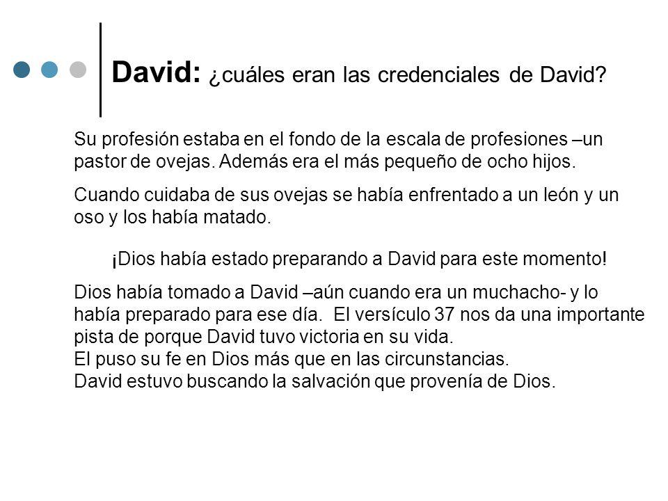 David: ¿cuáles eran las credenciales de David? Su profesión estaba en el fondo de la escala de profesiones –un pastor de ovejas. Además era el más peq