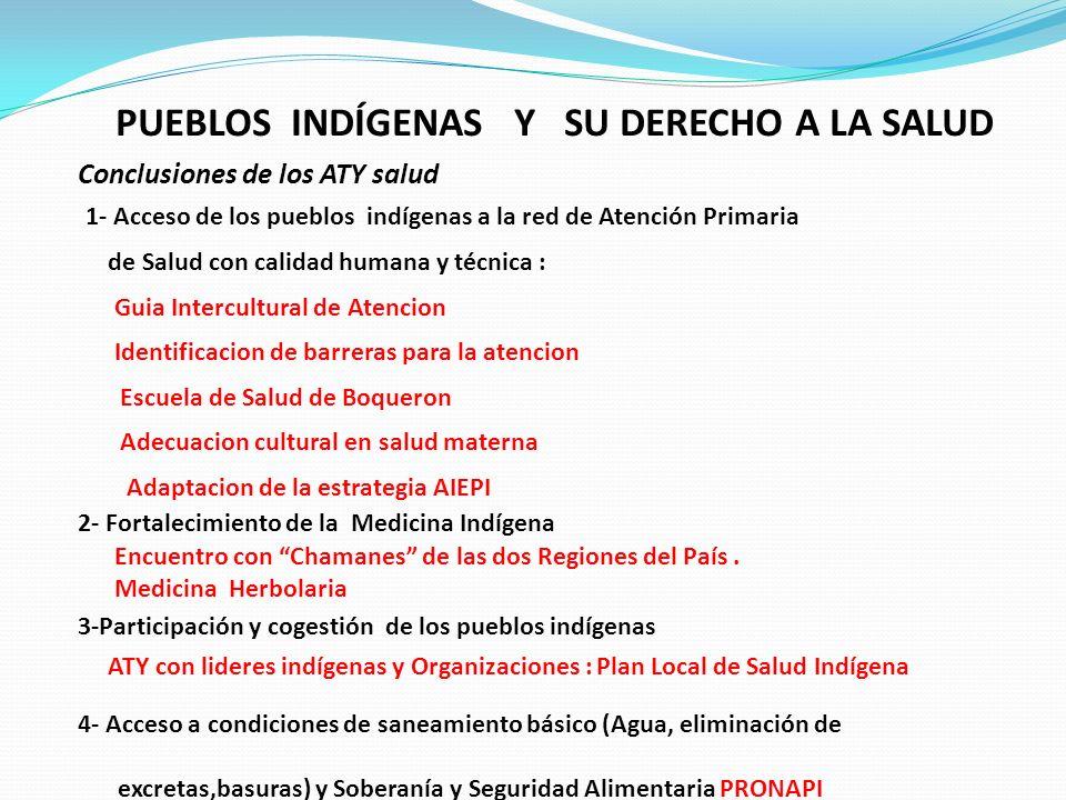 PUEBLOS INDÍGENAS Y SU DERECHO A LA SALUD Conclusiones de los ATY salud 1- Acceso de los pueblos indígenas a la red de Atención Primaria de Salud con
