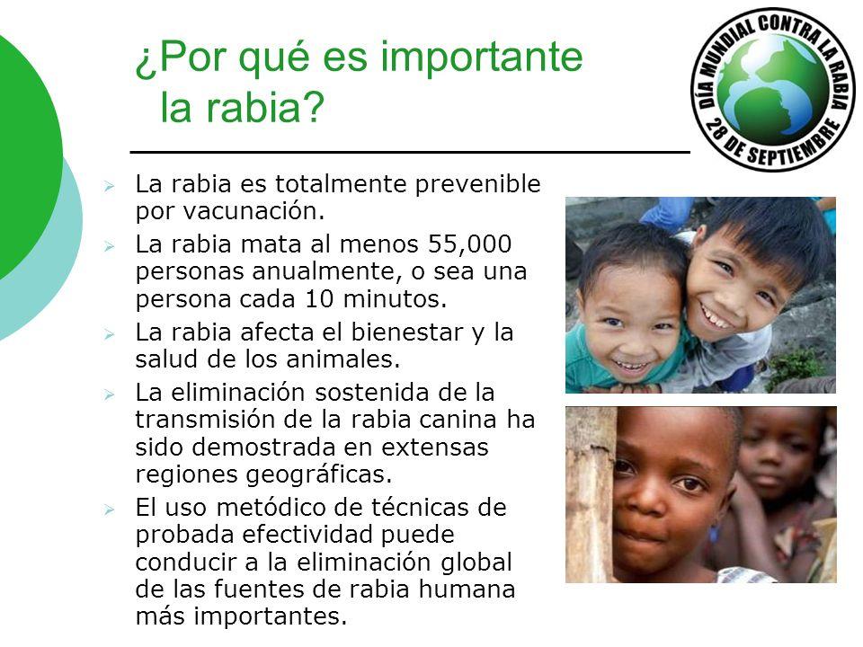 ¿Por qué es importante la rabia? La rabia es totalmente prevenible por vacunación. La rabia mata al menos 55,000 personas anualmente, o sea una person