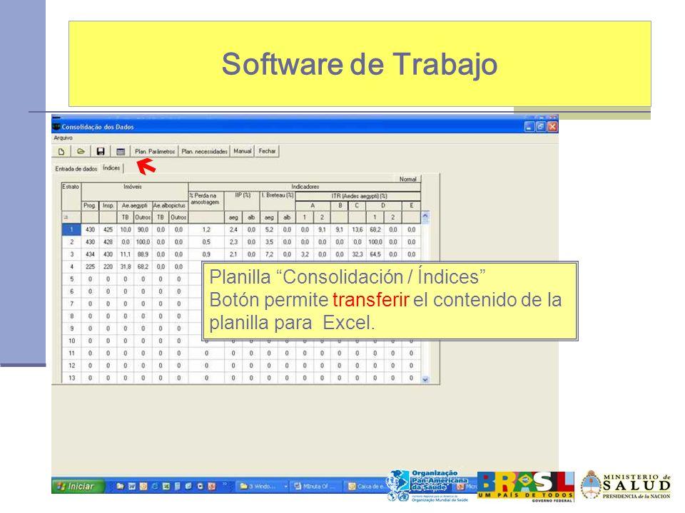 Software de Trabajo Planilla Consolidación / Índices Botón permite transferir el contenido de la planilla para Excel.