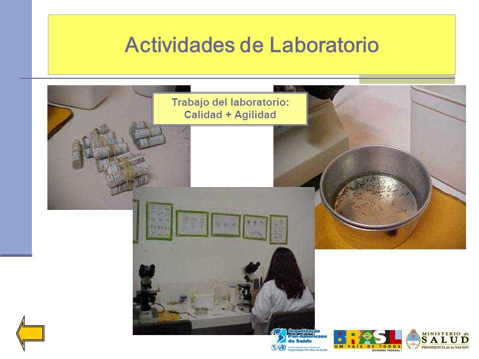 Actividades de Laboratorio Trabajo del laboratorio: Calidad + Agilidad