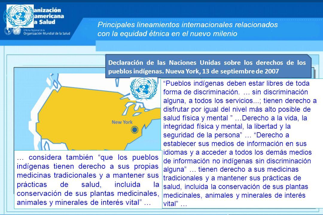 Principales lineamientos internacionales relacionados con la equidad étnica en el nuevo milenio Declaración de las Naciones Unidas sobre los derechos