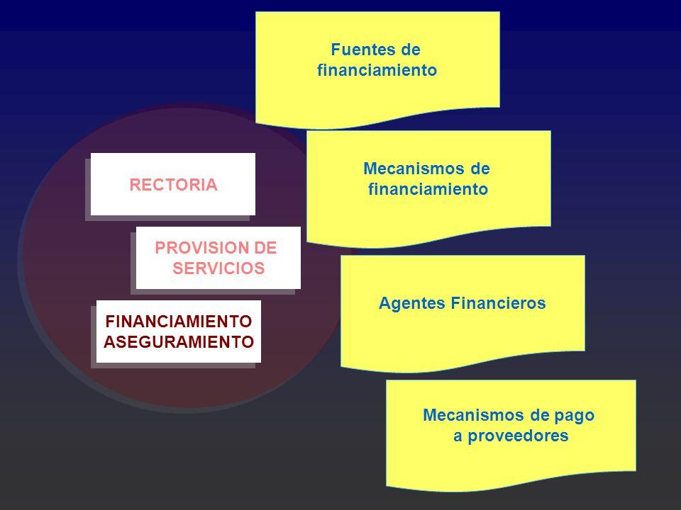 FINANCIAMIENTO ASEGURAMIENTO FINANCIAMIENTO ASEGURAMIENTO PROVISION DE SERVICIOS PROVISION DE SERVICIOS RECTORIA Fuentes de financiamiento Mecanismos
