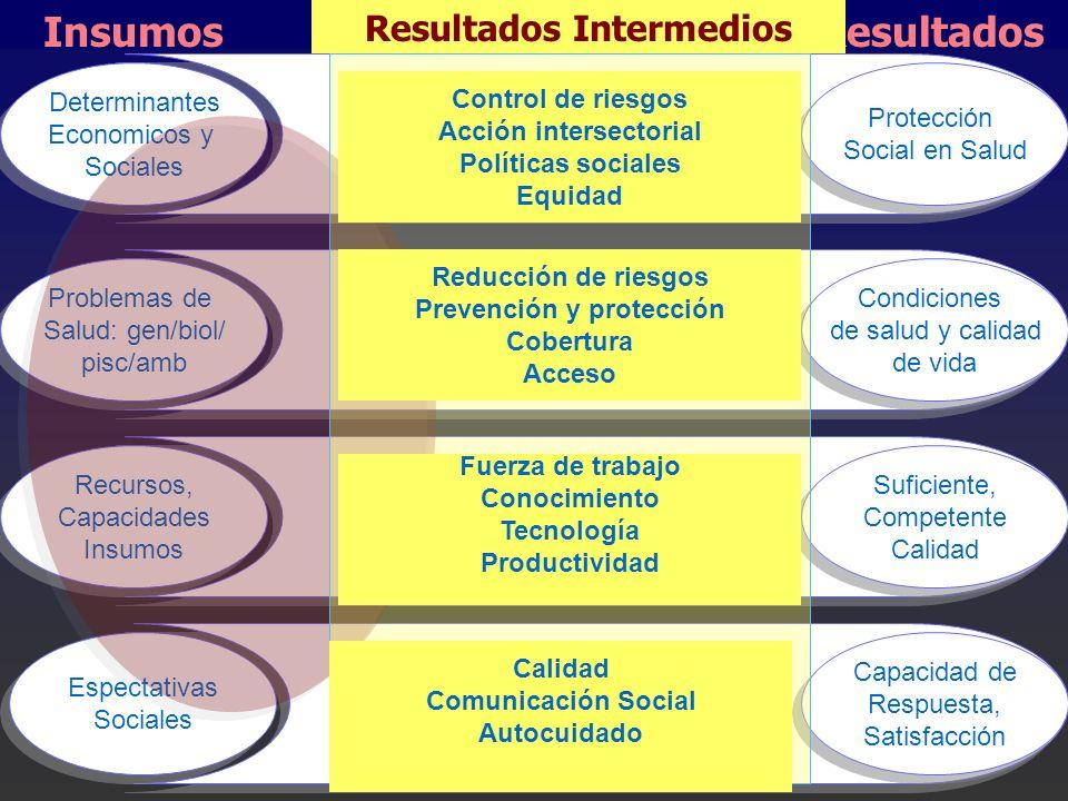 Determinantes Economicos y Sociales Determinantes Economicos y Sociales Problemas de Salud: gen/biol/ pisc/amb Problemas de Salud: gen/biol/ pisc/amb